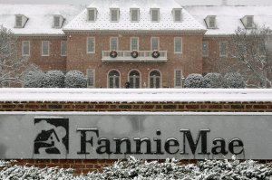 Fannie Mae mortgage sues nine banks